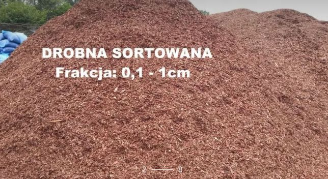 Kora sosnowa ogrodowa Kraków (małopolskie)
