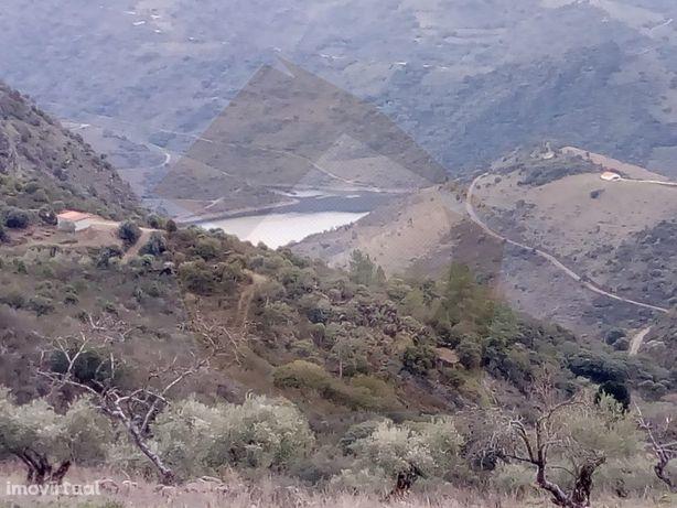Terreno - Mogadouro