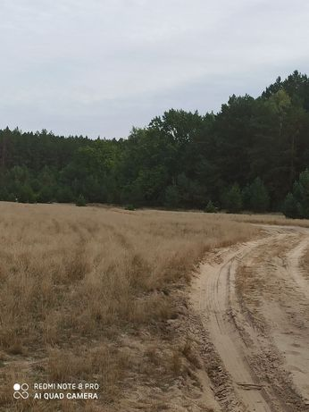 Земельный участок 30 соток в Авдеевой Ниве (Сухолучье)
