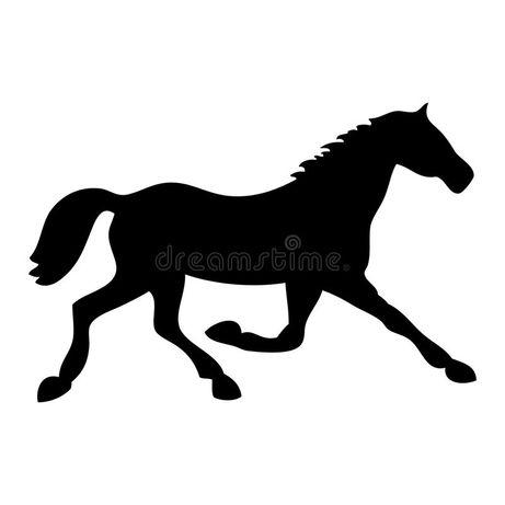 Spokojne konie do rekreacji
