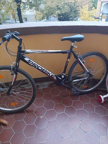 Rower czarny Probike