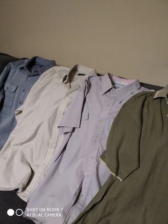 Koszule meskie zestaw
