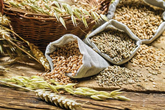 Продам зерно (пшениця, ячмінь)