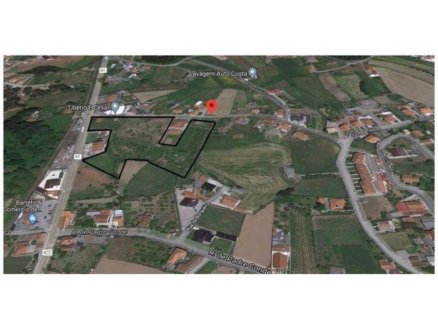 Terreno para Venda em Albergaria-a-Velha