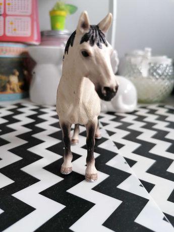 Konie schleich Polecam