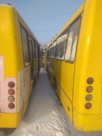 Автобусы Богдан с документами