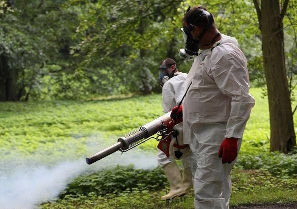 Odkomarzanie oprysk na kleszcze zwalczanie komarów lubuskie