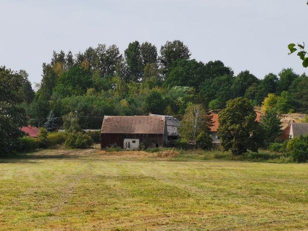 Gospodarstwo rolne, nadnoteckie łąki, stara karczma