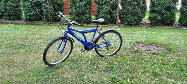 rower miejski zadbany