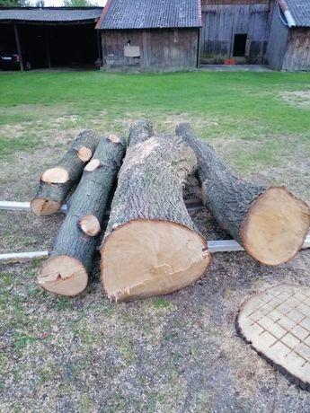 sprzedam drzewo lipowe