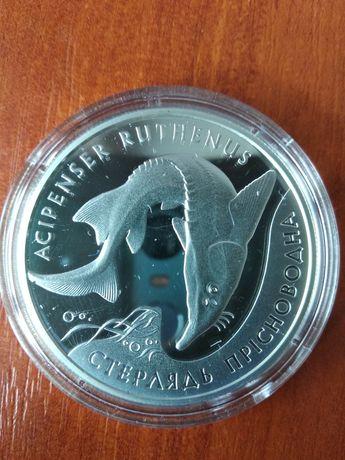 Стерлядь прісноводна монета НБУ срібло
