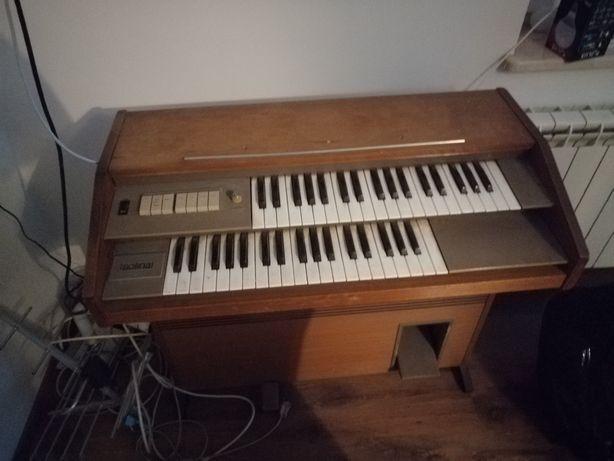 Solina pianino elektryczne