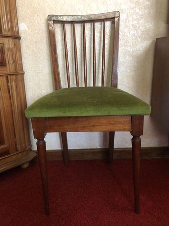 """Cadeiras em """" Raiz Mogno """" com tampo tecido verde"""