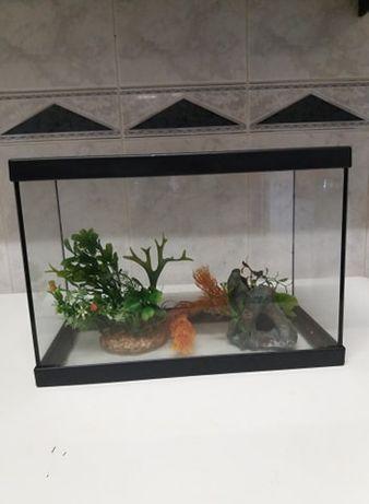 Aquário para peixes com plantas e tronco 15L