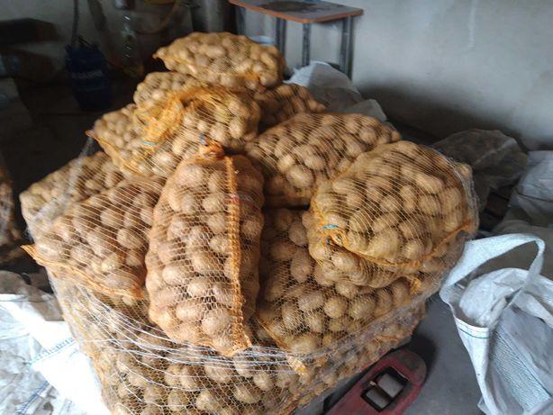 Warzywa możliwa dostawa,ziemniak 9 zł
