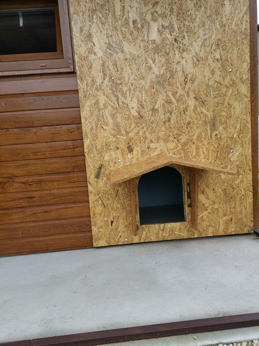 Buda dla psa ściana mobilna Strzelce Opolskie - image 1