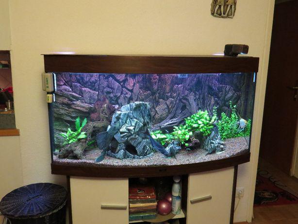 Akwarium Juwel Vision 260l