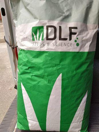 Насіння газонних трав (семена) PLAYGROUND (плейграунд) DLF . Данія.