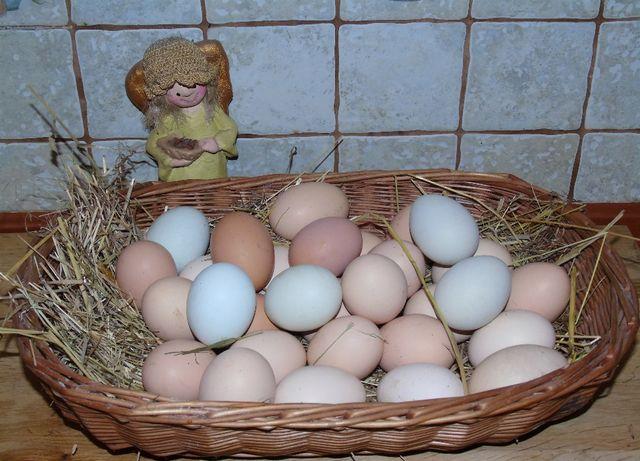 Prawdziwe wiejskie jaja
