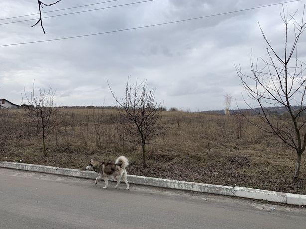 земельный участок в село Красное Первое 29 соток