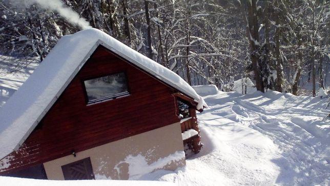 Domek do wynajęcia w górach w lesie suna wakacje wolne terminy