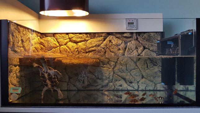 Terrarium akwarium dla żółwia wodnego wodno-lądowego żółw