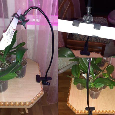Фитолампы,фитосветильники,лампа для цветов,держатель для лампы,шнур  д