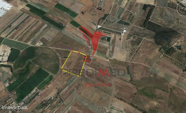 Terreno Rústico 2,24 ha,construção 460 m2,Alpiarça