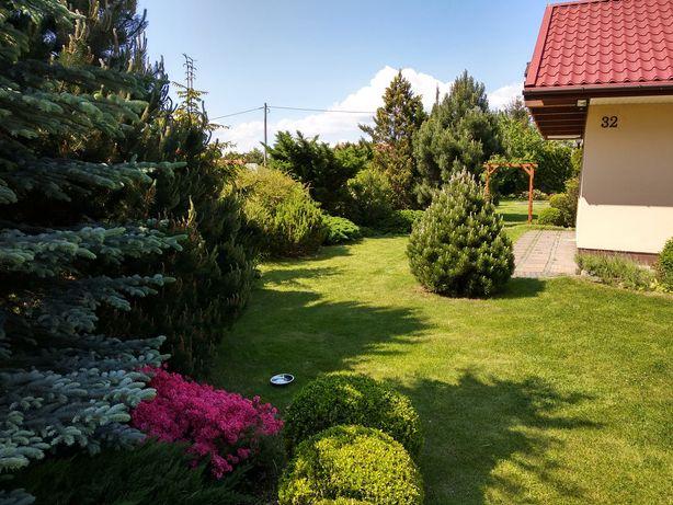 Piękna działka na ogródkach działkowych