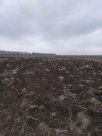 Продается  приватизированных земельный участок с.Ивановское (Красное)