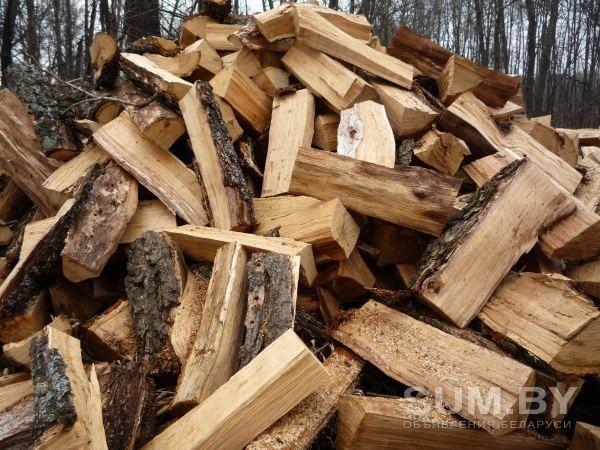 Продам дрова твердых пород.