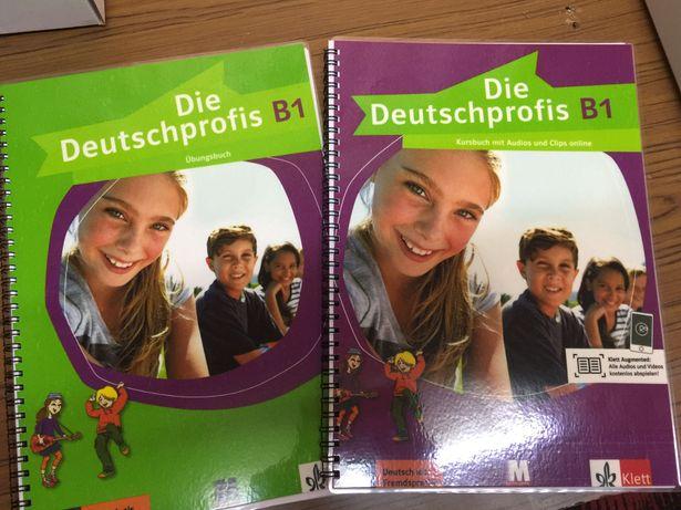 Die Deutschprofis B1