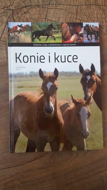 Konie i kuce. Poradnik/album