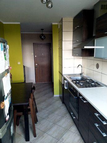 Do wynajęcia mieszkanie 2 pokoje 47,5m2