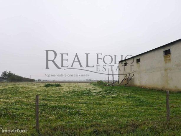 Terreno bem localizado para construção em Ferreira do Ale...