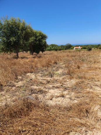 Terreno em vale figueira