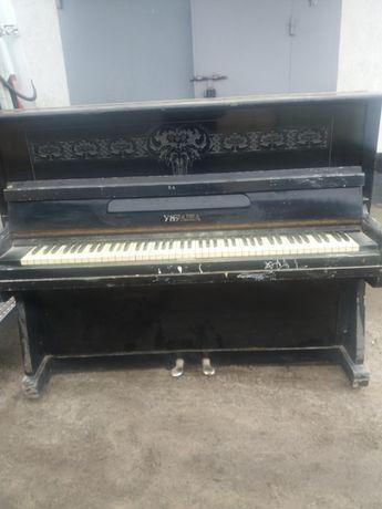 Пианино рабочие состояние