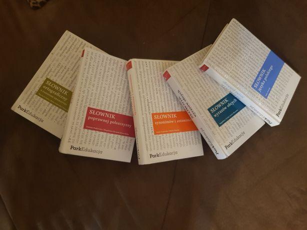 Słowniki szkolne