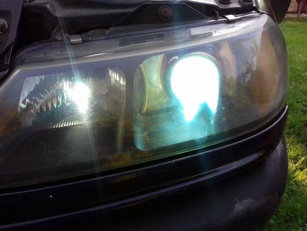 Lampy xenon laguna I