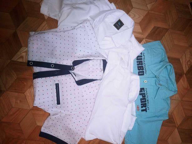 Spodnie spodenki koszulki 134/140