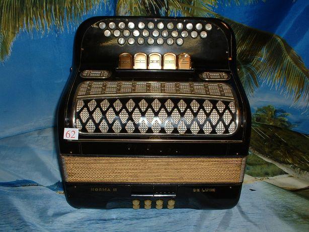 Avenda concertina n.62