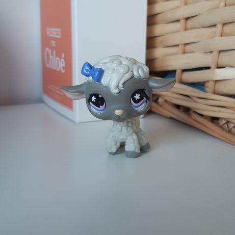 Littlest pet shop lps owieczka