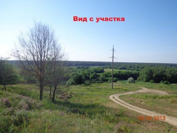 Продам земельный участок в Кочетке