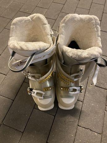 Buty narciarskie Rossignol 24,5 stan bardzo dobry mało używane