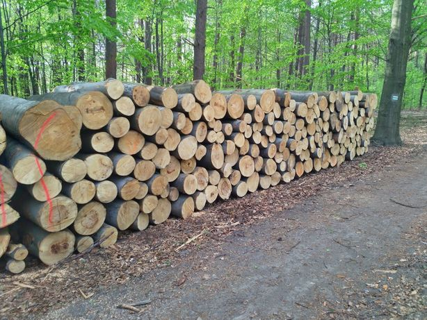 Drewno stosowe kominkowe opałowe Buk metry metrówki