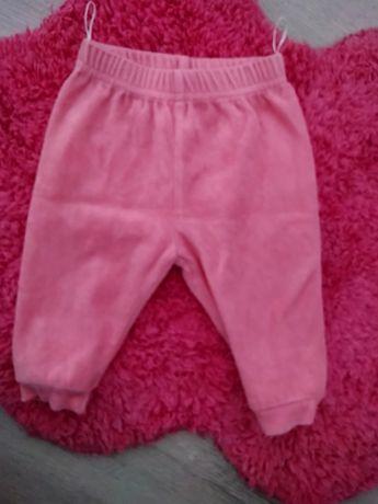 Welurowe spodnie legginsy baby club