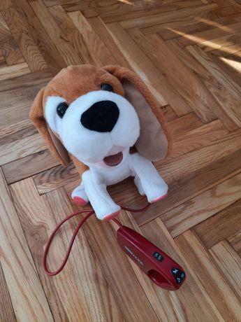 Interaktywny Piesek Pipi Max Beagle