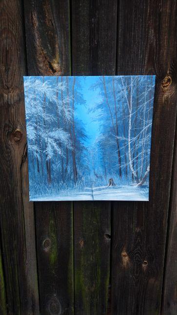 Obraz Mroźny błękit , zima przyroda PROMOCJA