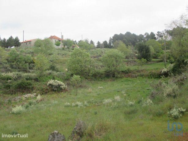 Moradia - 120334 m² - T4