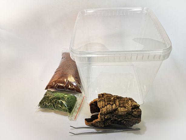 Zestaw do hodowli ptaszników skorpionów 5 rzeczy terrarium 19x19x19cm